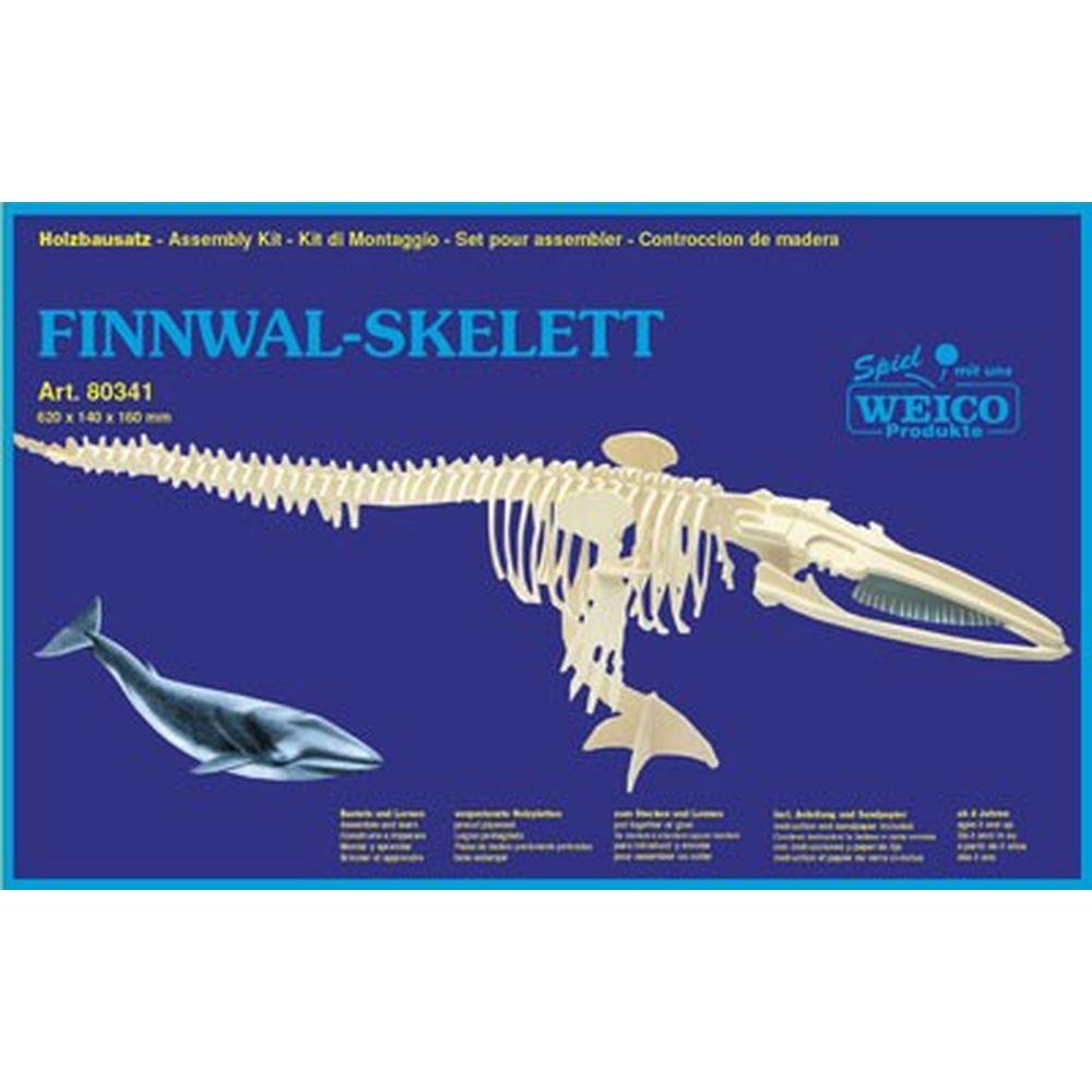3D Puzzle Holzbausatz Finnwalskelett